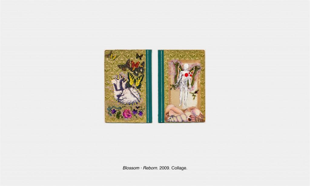 2009 Blossom 03